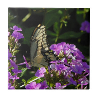 Butterfly Photo Gift Small Square Tile