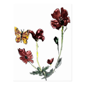 Butterfly Poppy Flowers Illustration Postcard
