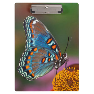 Butterfly profile on a flower clipboard
