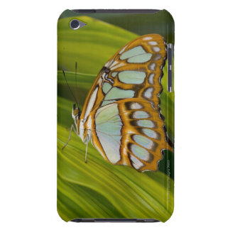 Butterfly resting on leaf barely there iPod case