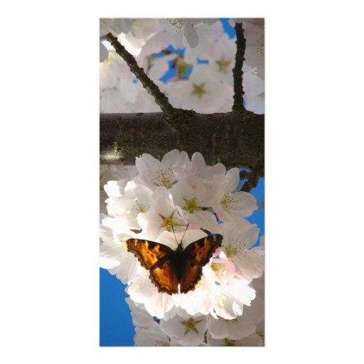 Butterfly Sakura Customized Photo Card