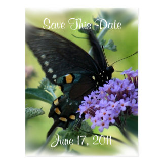 Butterfly-save the date- customize. postcard