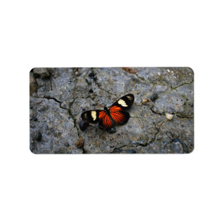 Butterfly Solitaire on Stone Address Label