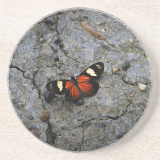 Butterfly Solitaire on Stone Beverage Coasters
