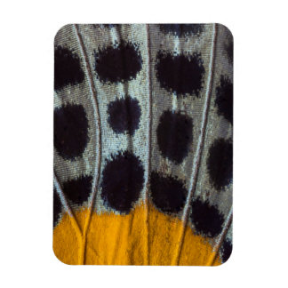 Butterfly spotted wing detail rectangular photo magnet