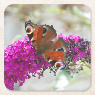 Butterfly Square Paper Coaster