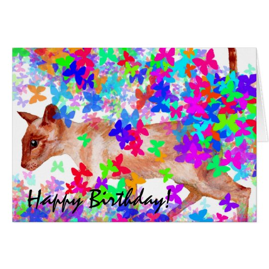 butterfly stalking cat birthday card