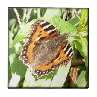 Butterfly Tiles