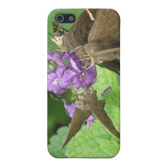 Butterfly Trio iPhone 4 Case