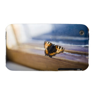 Butterfly trying to get out, Sweden. Case-Mate iPhone 3 Cases