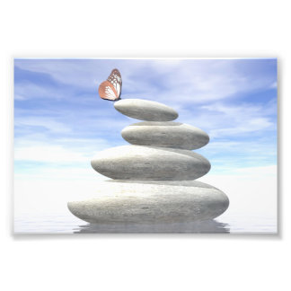 Butterfly upon balanced stones art photo