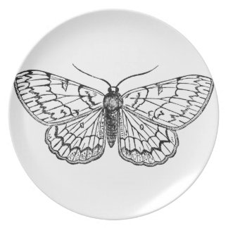 butterfly vintage illustration dinner plates