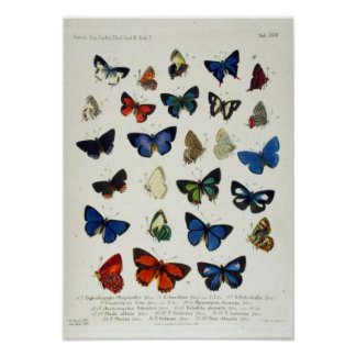 Science Posters from Zazzle