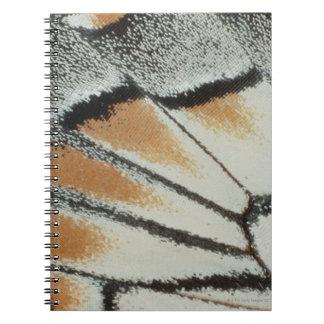 Butterfly Wing Notebook