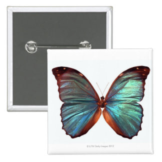 Butterfly with wings spread 2 15 cm square badge