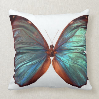 Butterfly with wings spread 2 cushion