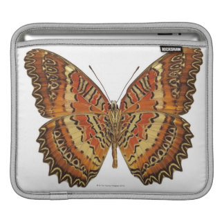 Butterfly with wings spread iPad sleeve