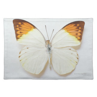 Butterfly with wingspread, found in regions of Asi Placemat