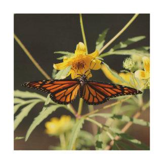 Butterfly, Wood Photo Print. Wood Print