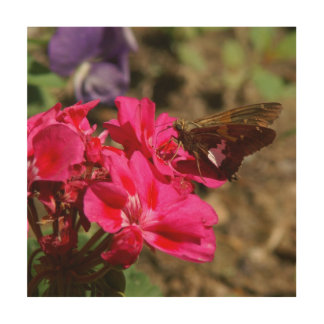 Butterfly, Wood Photo Print. Wood Wall Art