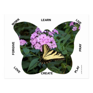 Butterfly Words to Live By Postcard