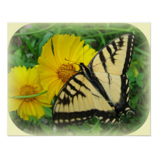 Butterfly Yellow Poster