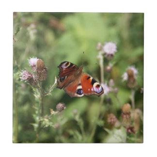 Butterflying Ceramic Tiles