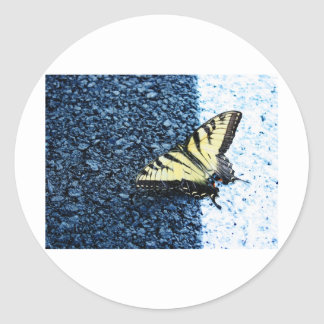 Butterly Round Sticker