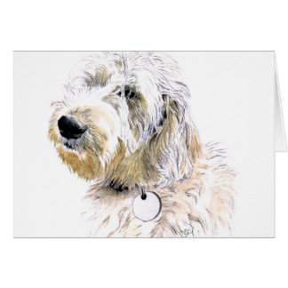 Butters the Labradoodle Notecards Note Card