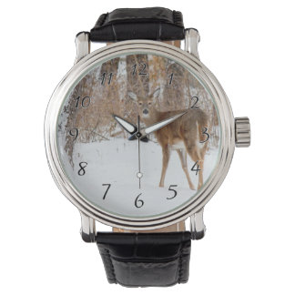Button Buck Deer in Winter White Snowy Field Watch