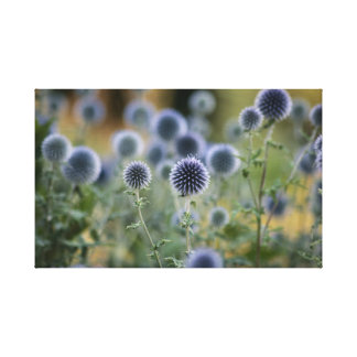 Button Canvas Print