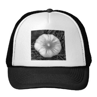 Button Mushroom Trucker Hat