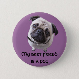 "Button ""pug """