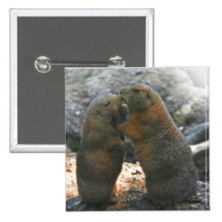 Button  with cute marmot couple