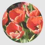Button With Tulips Sticker