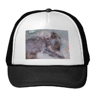 Buttons and the babies trucker hat