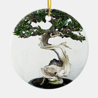 Buttonwood Bonsai Tree Round Ceramic Decoration