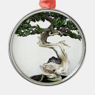 Buttonwood Bonsai Tree Silver-Colored Round Decoration