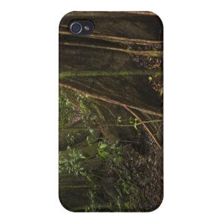 Buttress Roots. Rainforest, Mapari Rupununi, Cases For iPhone 4