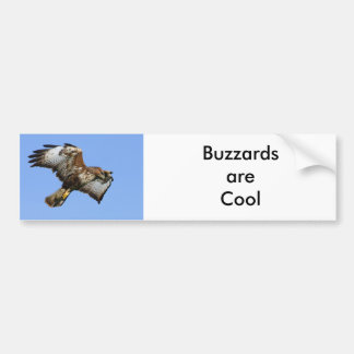 Buzzard  1 bumper sticker