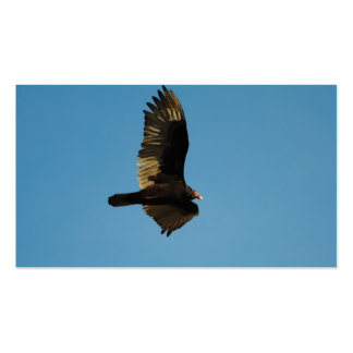 Buzzard in Flight 2 Pack Of Standard Business Cards