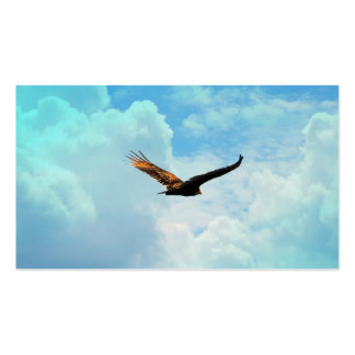 Buzzard in Flight 3 Pack Of Standard Business Cards