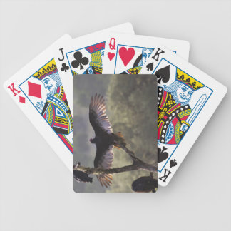 Buzzards' Roost near Leaky, Texas Bicycle Playing Cards