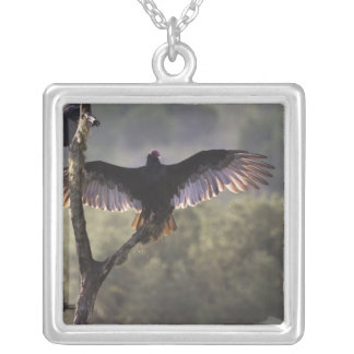 Buzzards' Roost near Leaky, Texas Silver Plated Necklace