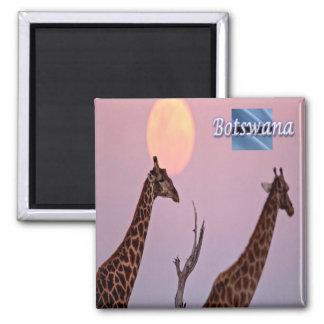 BW - Botswana - Earth Touch Giraffe Moon Square Magnet