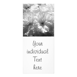 BW Garden Flowers Rack Card
