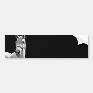 BW Horse Bumper Sticker