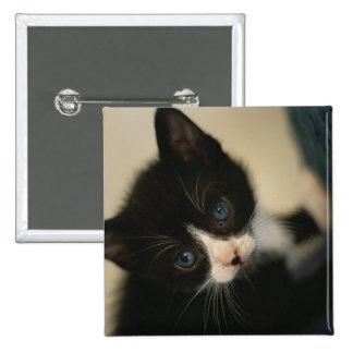 BW Kitten Button