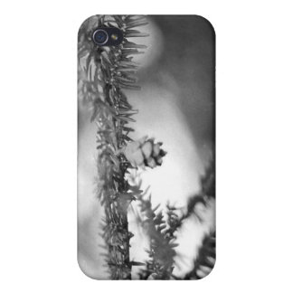 BW Pinecone iPhone 4 Speck Case iPhone 4 Cover