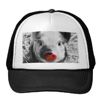 BW Splash, sweet piglet Trucker Hat